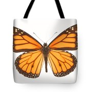 Closeup Of A Butterfly Tote Bag