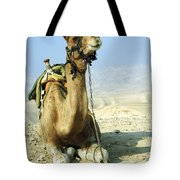 Closeup Of A Camel Tote Bag