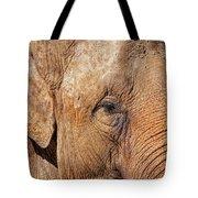 Closeup Of An Elephant Tote Bag