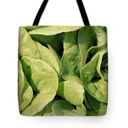 Closeup Of Boston Lettuce Tote Bag