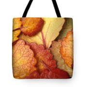 Closeup Of Dwarf Birch Leaves Autumn Ar Tote Bag