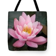 Closeup Of Pink Waterlily In A Pond Tote Bag