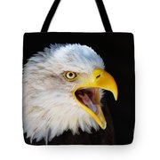 Closeup Portrait Of A Screaming American Bald Eagle Tote Bag