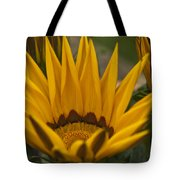 Closing Time Tote Bag