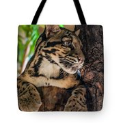 Clouded Leopard 2 Tote Bag