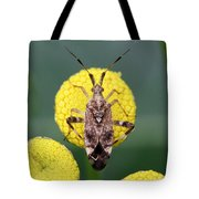 Clouded Plant Bug On Tansy Tote Bag