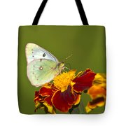 Clouded Sulphur Butterfly Tote Bag