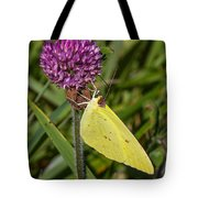 Clouded Sulphur On Clover Tote Bag