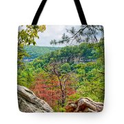 Cloudland Canyon State Park Georgia Tote Bag