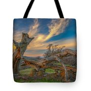 Clouds Over Broken Tree At Sunset Tote Bag