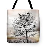Cloudy Day Blackbirds Tote Bag