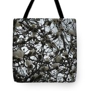 Cloudy Day For Young Magnolias Tote Bag