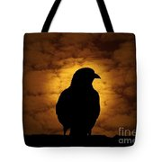 Cloudy Evening Tote Bag