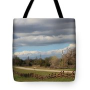 Cloudy Sky With A Log Fence Tote Bag