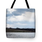 Cloudy Spring Day Tote Bag