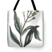 Clove Eugenia Aromatica Tote Bag
