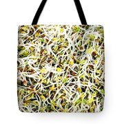 Clover Sprouts Tote Bag