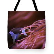 Clown Fish In Amoeba Tote Bag