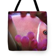 Clownfish 2 Tote Bag