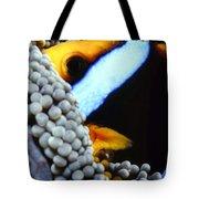 Clownfish 7 Tote Bag