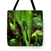 Club Tailed Dragonfly Tote Bag
