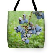Clump Of Blueberries 3 Tote Bag