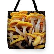 Cluster Fungi Tote Bag
