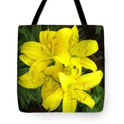 Cluster Of Yellow Lilly Flowers In The Garden Tote Bag