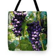 Clusters Of Red Wine Grapes Hanging On The Vine Tote Bag