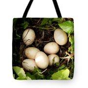Clutch Tote Bag