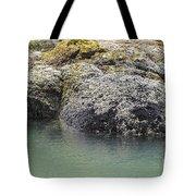 Coast Ecosystems Tote Bag