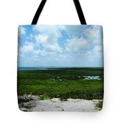 Coastal Aransas Nwr Tote Bag