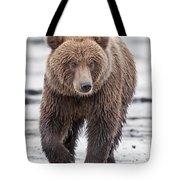 Coastal Brown Bear A Walk On The Beach Tote Bag