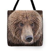 Coastal Brown Bear Closeup Tote Bag