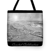 Coastal Calibration Tote Bag