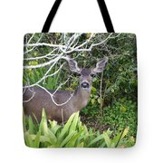 Coastal Deer Tote Bag