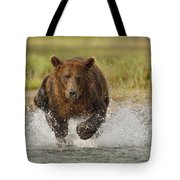 Coastal Grizzly Boar Fishing Tote Bag by Kent Fredriksson