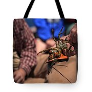 Coastal Maine Is Lobster Tote Bag