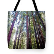 Coastal Redwoods Reach For The Sky In Armstrong Redwoods State Preserve Near Guerneville-ca Tote Bag