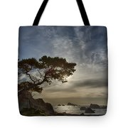 Coastal Vision Tote Bag