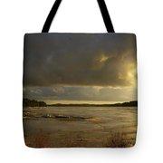 Coastal Winters Afternoon Tote Bag