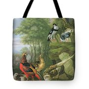 Cock Pheasant Hen Pheasant And Chicks And Other Birds In A Classical Landscape Tote Bag