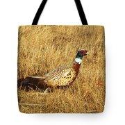 Cock Ringneck Pheasant Tote Bag