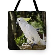 Cockatoo White Parrot Tote Bag