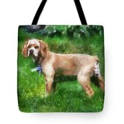 Cocker Spaniel Outside 07 Tote Bag