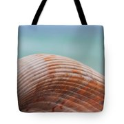 Cockle Shell Tote Bag