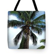 Coconut Palm Tree Tote Bag