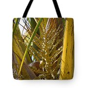 Coconut Shoot Tote Bag