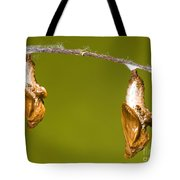 Cocooned Gulf Fritillary Butterflies Tote Bag