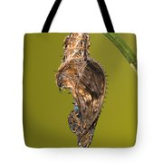Cocooned Zebra Longwing Butterfly Tote Bag